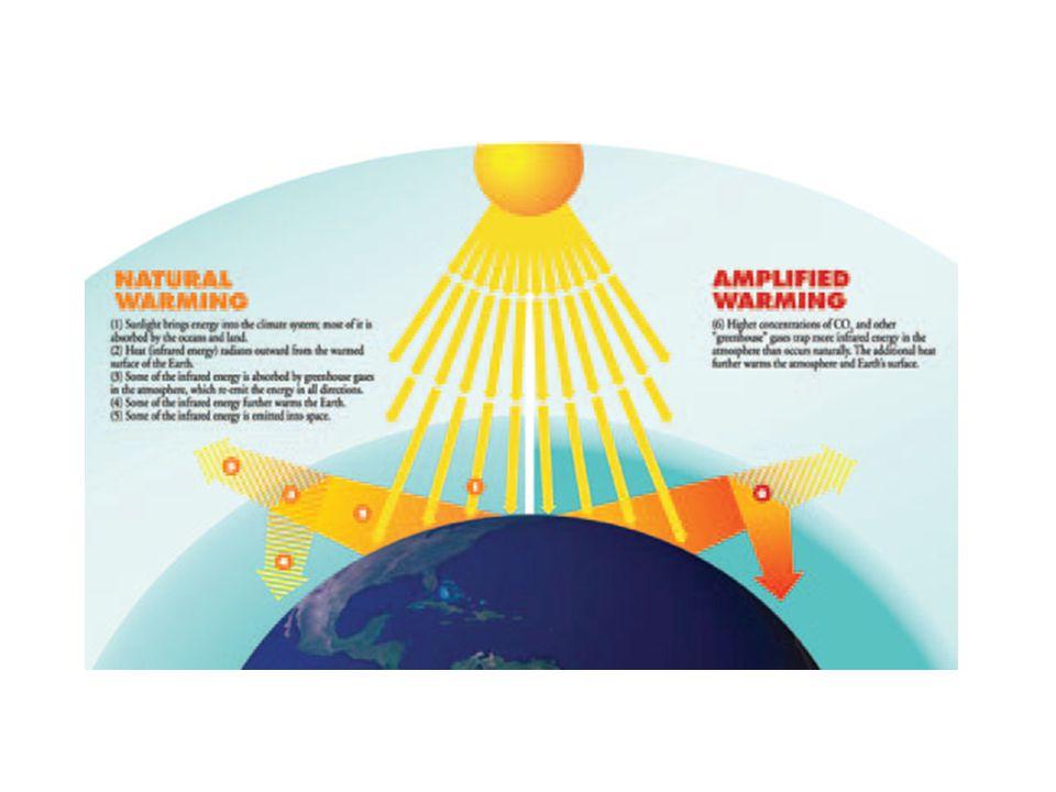 Coal Carbon Capture and Storage