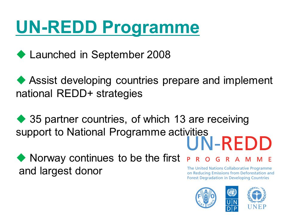UN-REDD Programme  Launched in September 2008  Assist developing countries prepare and implement national REDD+ strategies  35 partner countries, of which 13 are receiving support to National Programme activities  Norway continues to be the first and largest donor