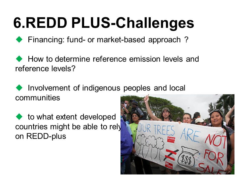 6.REDD PLUS-Challenges  Financing: fund- or market-based approach .