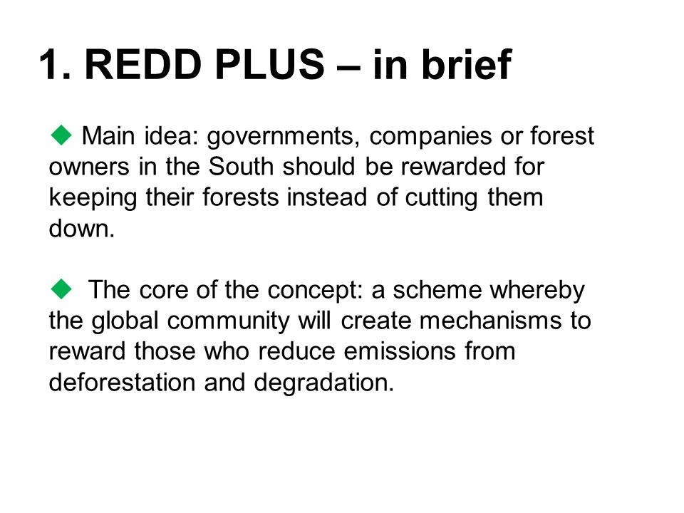 1. REDD PLUS – in brief  Main idea: governments, companies or forest owners in the South should be rewarded for keeping their forests instead of cutt