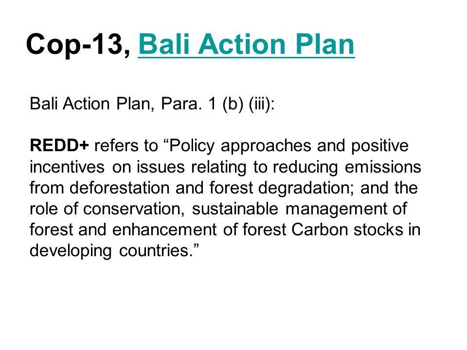 """Cop-13, Bali Action PlanBali Action Plan Bali Action Plan, Para. 1 (b) (iii): REDD+ refers to """"Policy approaches and positive incentives on issues rel"""