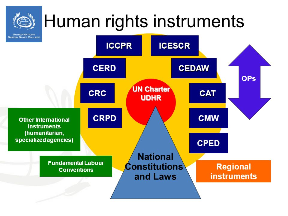 UN Charter UDHR ICCPRICESCR CERDCEDAW CATCRC National Constitutions and Laws CMW Other International Instruments (humanitarian, specialized agencies)