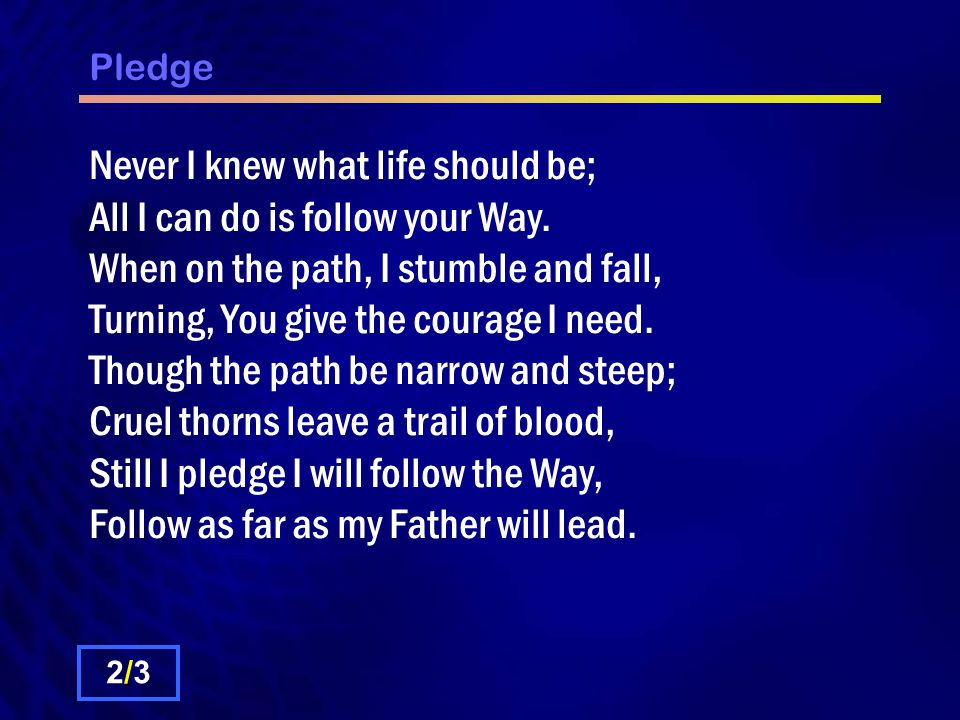Pledge Never I knew what life should be; All I can do is follow your Way.