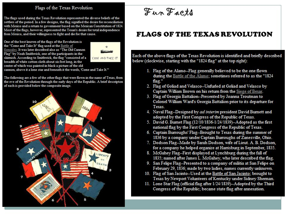 FLAGS OF THE TEXAS REVOLUTION Fun Facts