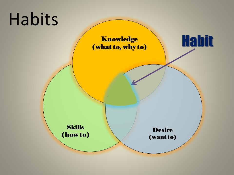 Habit Habits