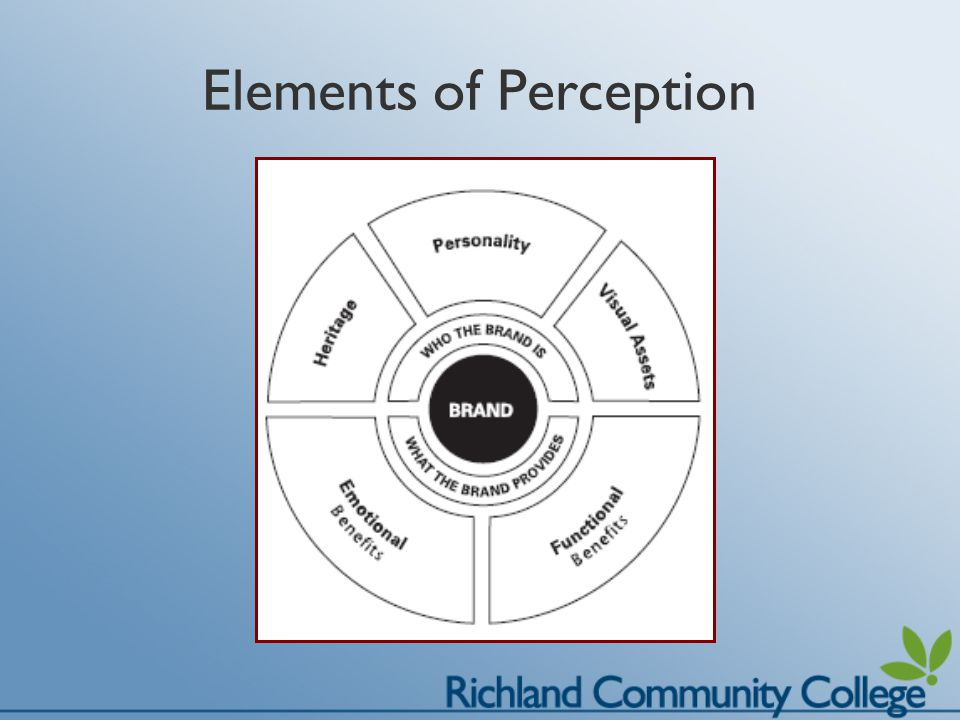 Elements of Perception