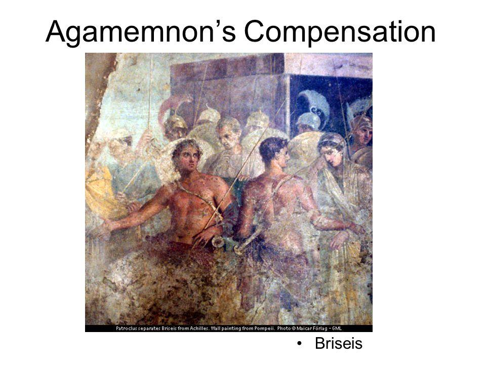 Agamemnon's Compensation Briseis
