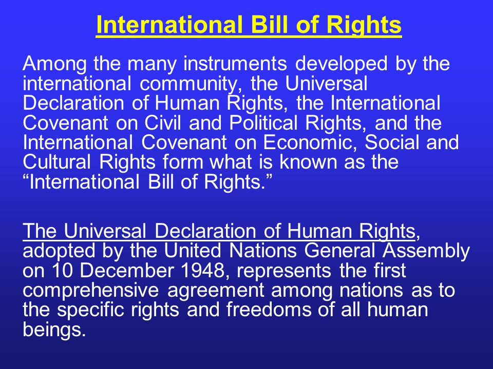 Among the many instruments developed by the international community, the Universal Declaration of Human Rights, the International Covenant on Civil an