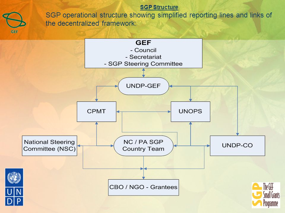 SGP Structure SGP operational structure showing simplified reporting lines and links of the decentralized framework: