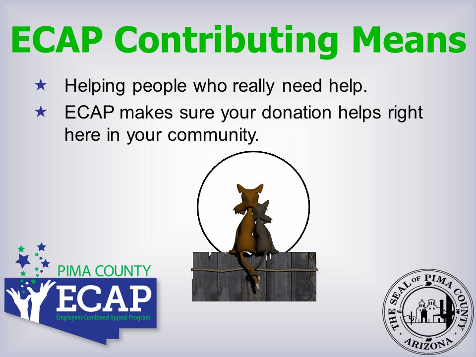  Helping people who really need help.  ECAP makes sure your donation helps right here in your community. ECAP Contributing Means