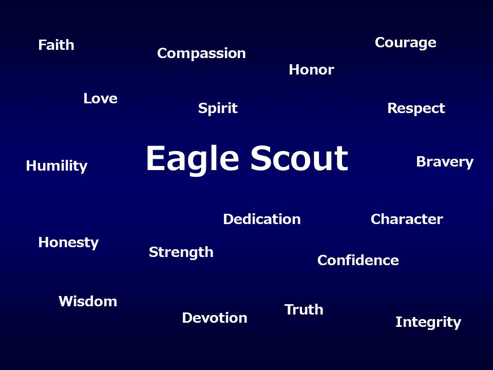 In Honor of Eagle Scout/s Scout Names Here Universal - Designed for Single/ Multiple (up to 4) Scouts