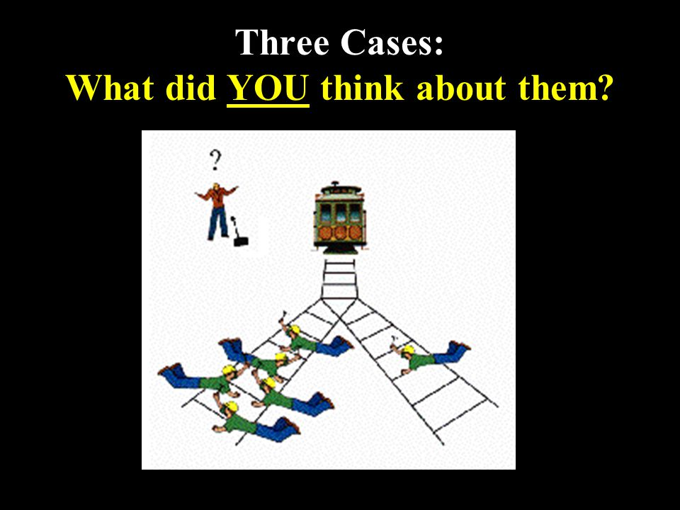 14 Three Cases: What did YOU think about them