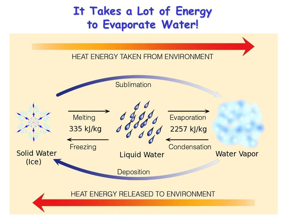 It Takes a Lot of Energy to Evaporate Water!