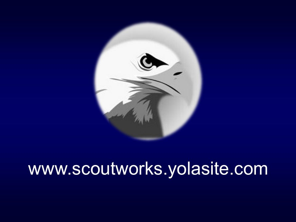 The Ballad of an Eagle Scout has been written and produced for Our Eagle Scouts and their Parents by Troop XXX and by www.scoutworks.yolasite.com