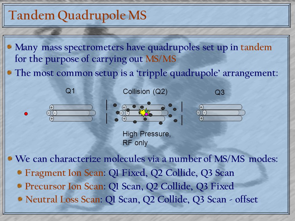 Tandem Quadrupole MS Many mass spectrometers have quadrupoles set up in tandem for the purpose of carrying out MS/MS The most common setup is a 'tripp
