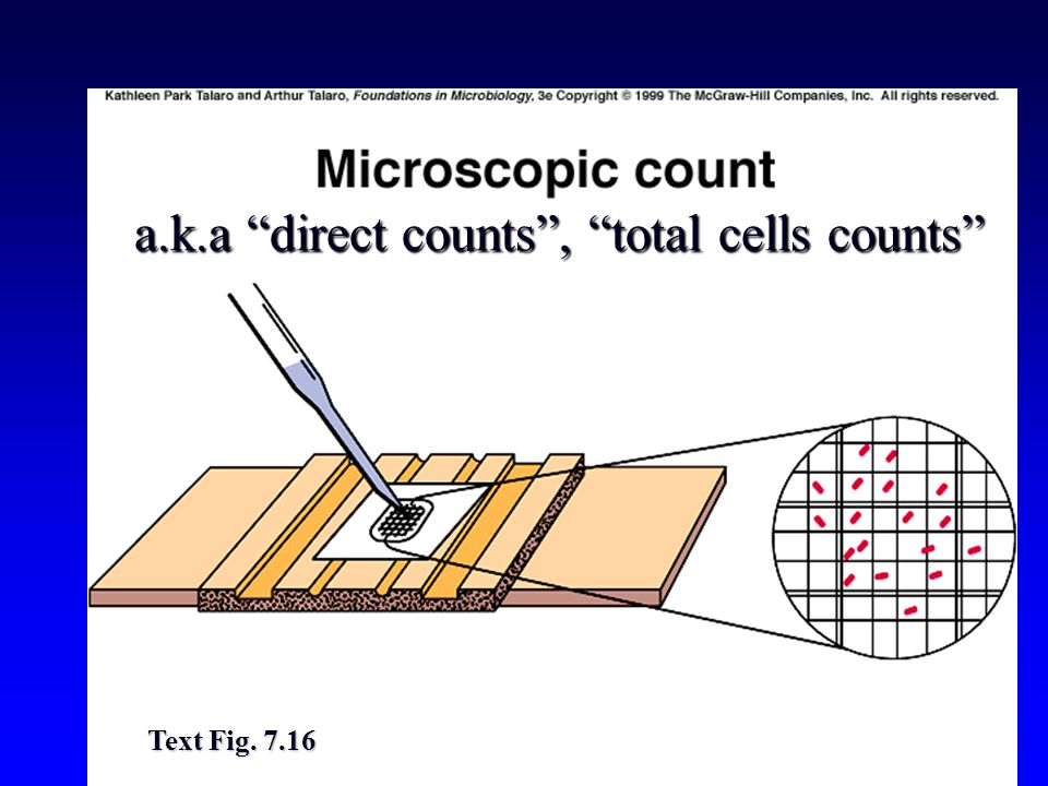 a.k.a direct counts , total cells counts Text Fig. 7.16
