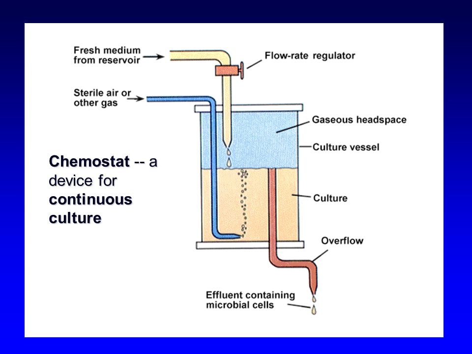 Chemostat -- a device for continuous culture