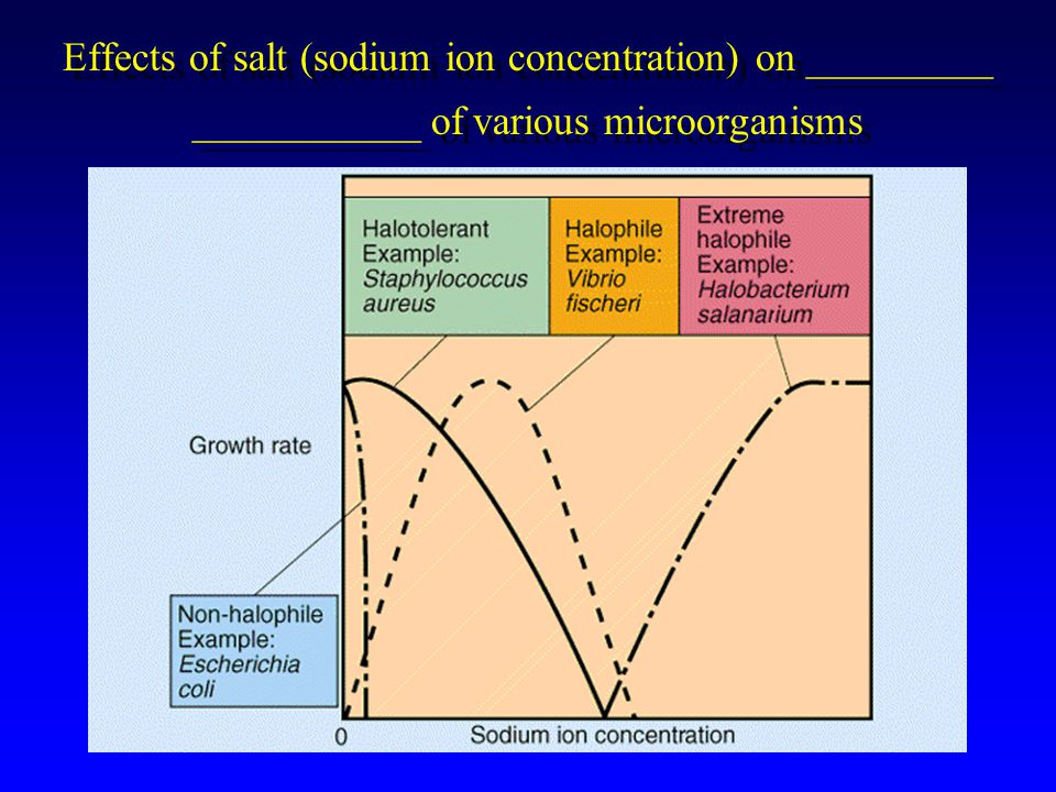 Effects of salt (sodium ion concentration) on _________ ___________ of various microorganisms