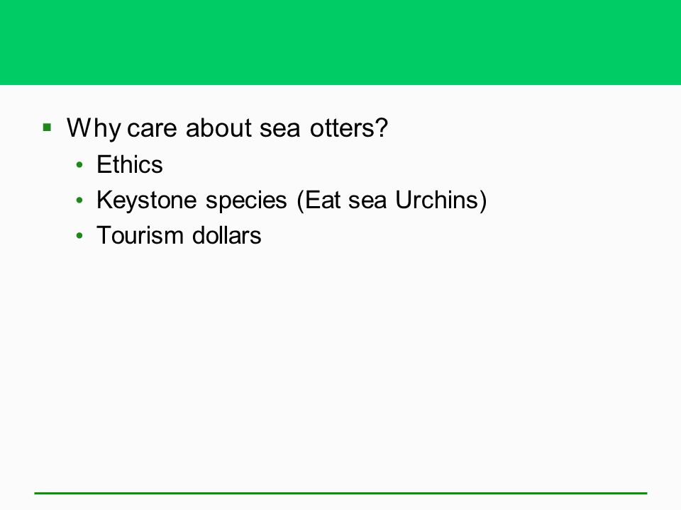  Why care about sea otters? Ethics Keystone species (Eat sea Urchins) Tourism dollars