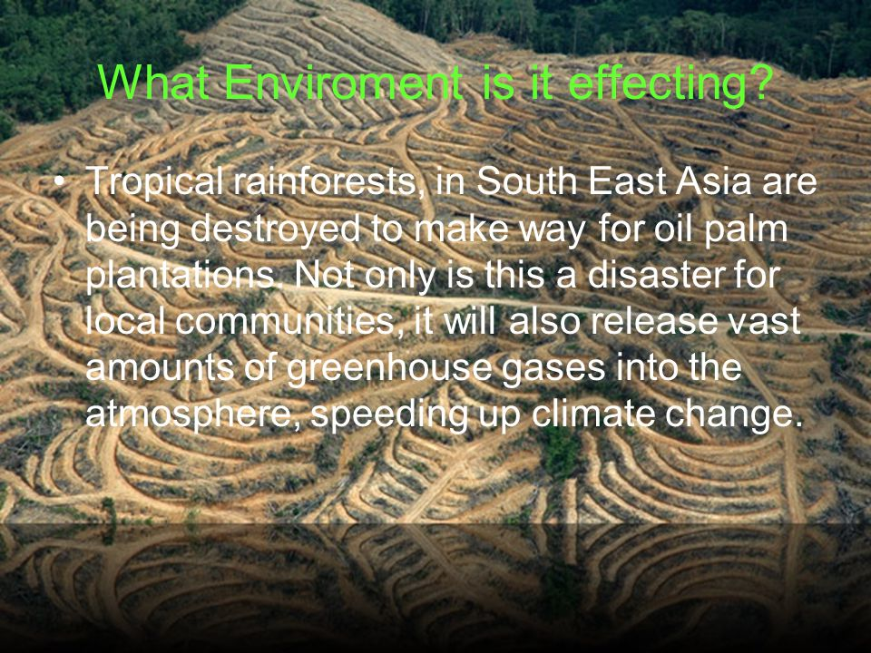 What Enviroment is it effecting.