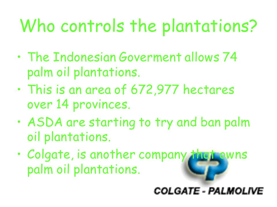 Who controls the plantations. The Indonesian Goverment allows 74 palm oil plantations.