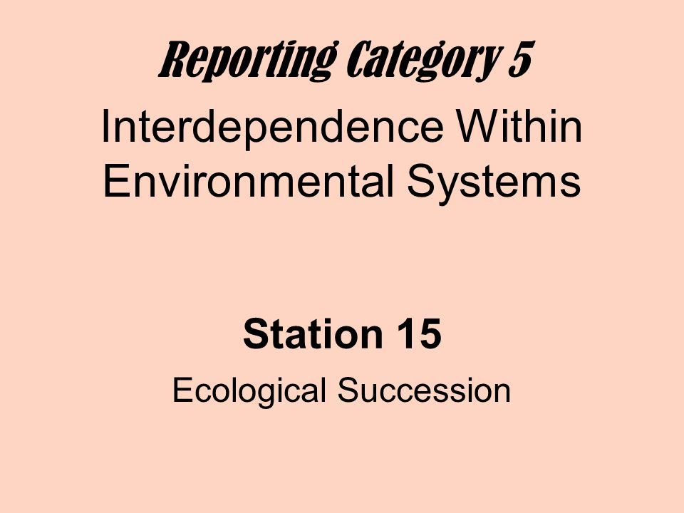 Station 15 Ecological Succession Reporting Category 5 Interdependence Within Environmental Systems