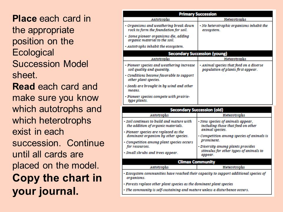 Place each card in the appropriate position on the Ecological Succession Model sheet.