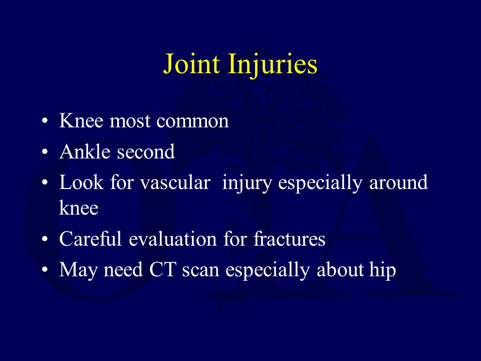 Joint Injuries Knee most common Ankle second Look for vascular injury especially around knee Careful evaluation for fractures May need CT scan especia