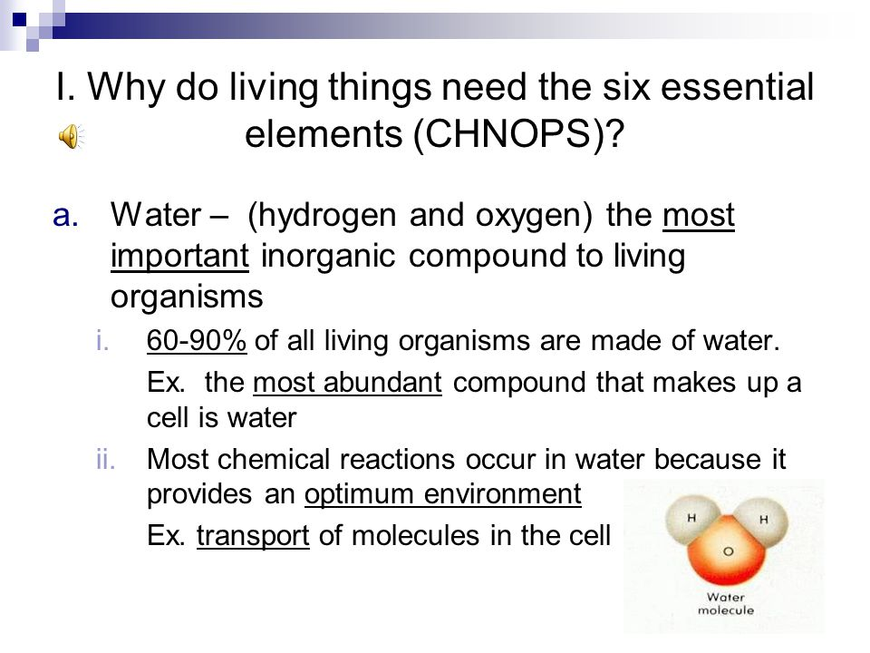 I. Why do living things need the six essential elements (CHNOPS)? A.Organization of an Organism – Living things are composed of two main types of chem