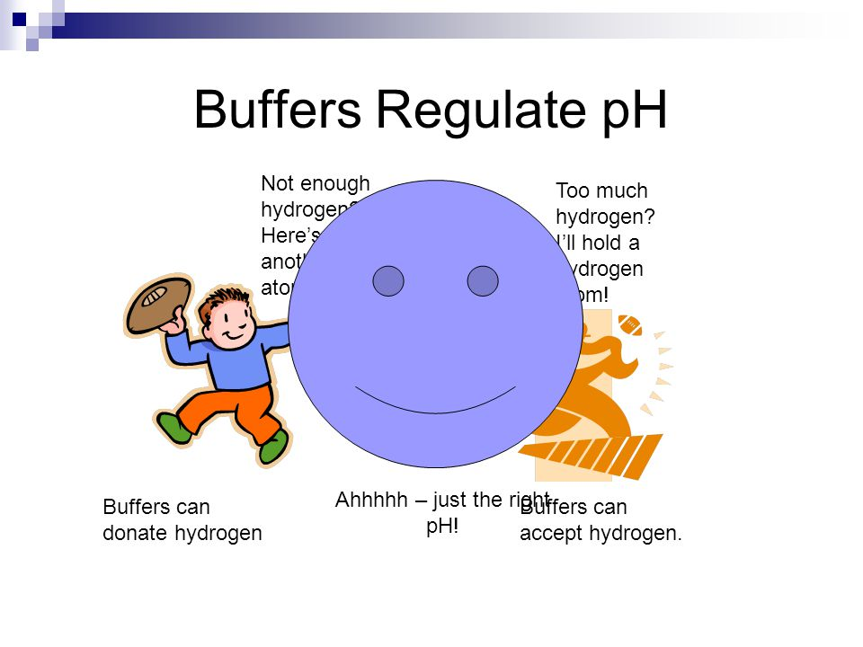 Buffers Regulate pH Not enough hydrogen.Here's another H atom.