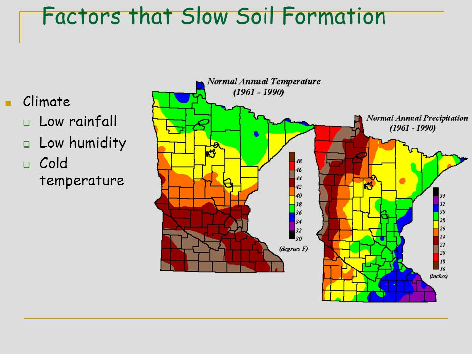 Factors that Slow Soil Formation Climate  Low rainfall  Low humidity  Cold temperature
