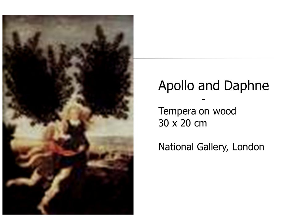 Apollo and Daphne - Tempera on wood 30 x 20 cm National Gallery, London