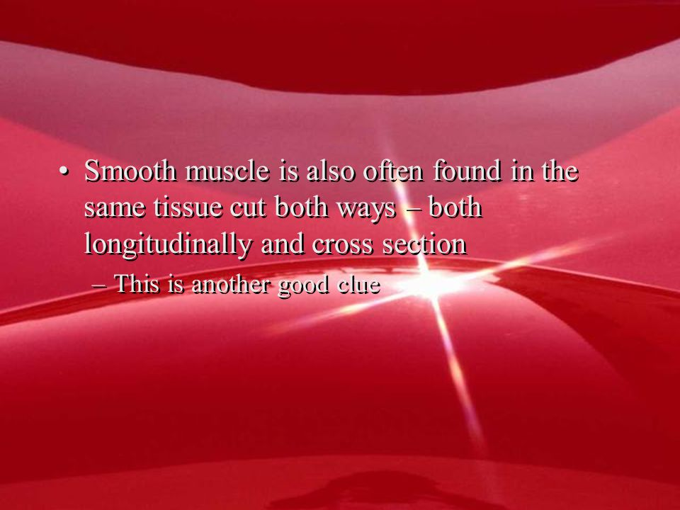 Smooth muscle is also often found in the same tissue cut both ways – both longitudinally and cross section –This is another good clue Smooth muscle is also often found in the same tissue cut both ways – both longitudinally and cross section –This is another good clue