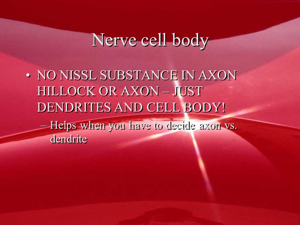 Nerve cell body NO NISSL SUBSTANCE IN AXON HILLOCK OR AXON – JUST DENDRITES AND CELL BODY.