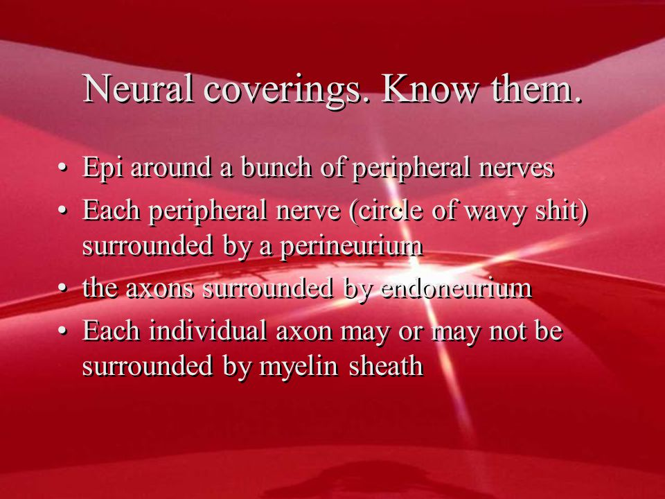 Neural coverings. Know them.