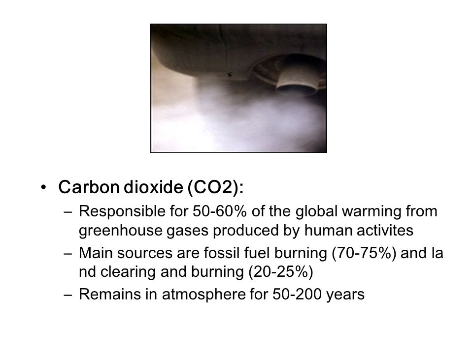 Carbon dioxide (CO2): –Responsible for 50-60% of the global warming from greenhouse gases produced by human activites –Main sources are fossil fuel bu