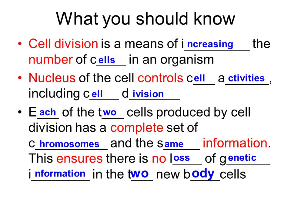 What you should know Cell division is a means of i_________ the number of c____ in an organism Nucleus of the cell controls c___ a______, including c____ d_______ E___ of the t___ cells produced by cell division has a complete set of c__________ and the s_____ information.