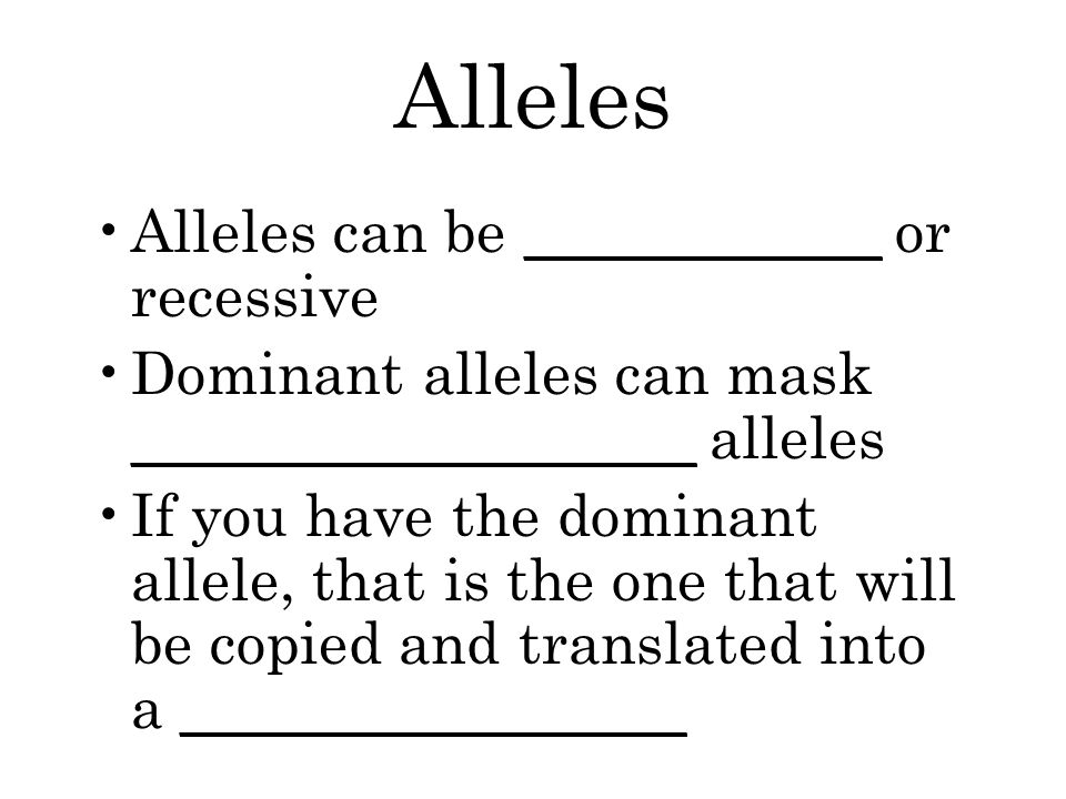 Alleles Alleles can be ____________ or recessive Dominant alleles can mask ___________________ alleles If you have the dominant allele, that is the one that will be copied and translated into a _________________