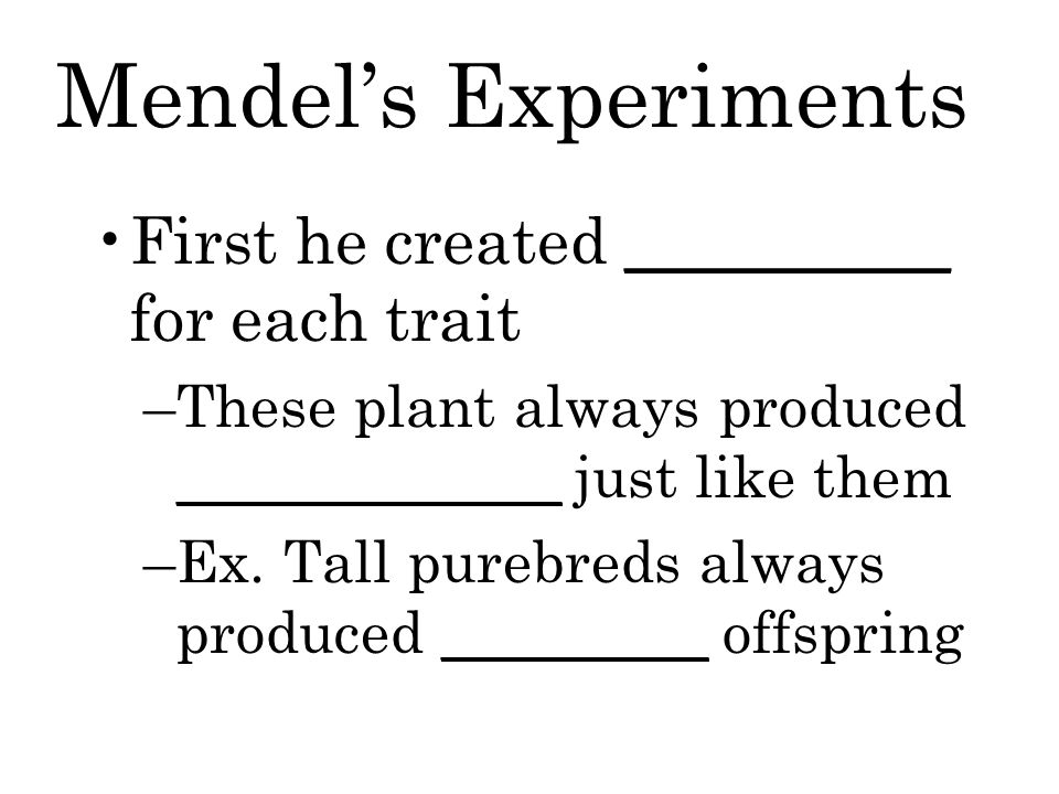 Mendel's Experiments First he created __________ for each trait –These plant always produced _____________ just like them –Ex.