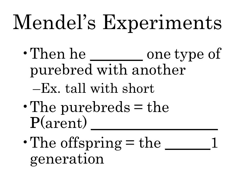 Mendel's Experiments Then he _______ one type of purebred with another –Ex.