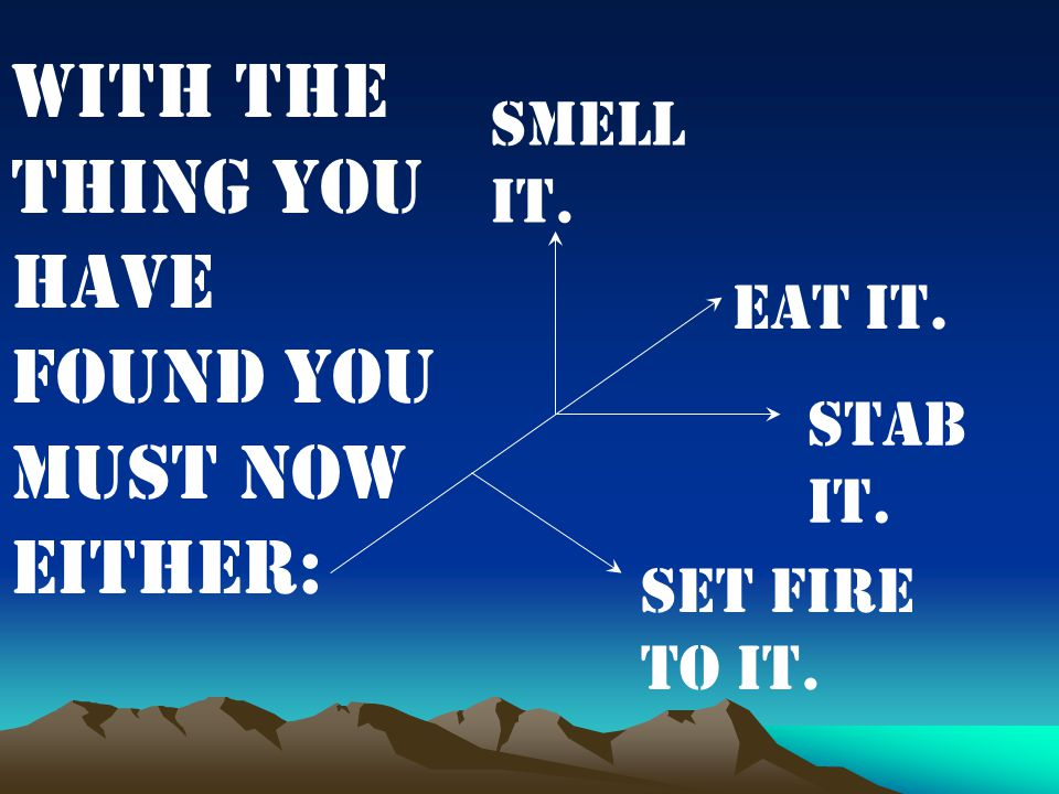 With the thing you have found you must now either: Eat it. Stab it. Smell it. Set fire to it.