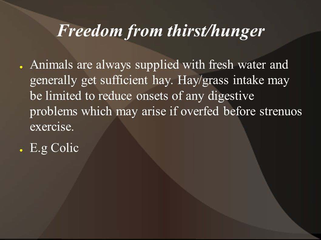 Freedom from thirst/hunger ● Animals are always supplied with fresh water and generally get sufficient hay.