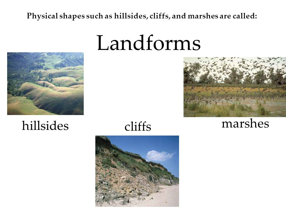 Marshes hills, and cliffs are three kinds of landforms.