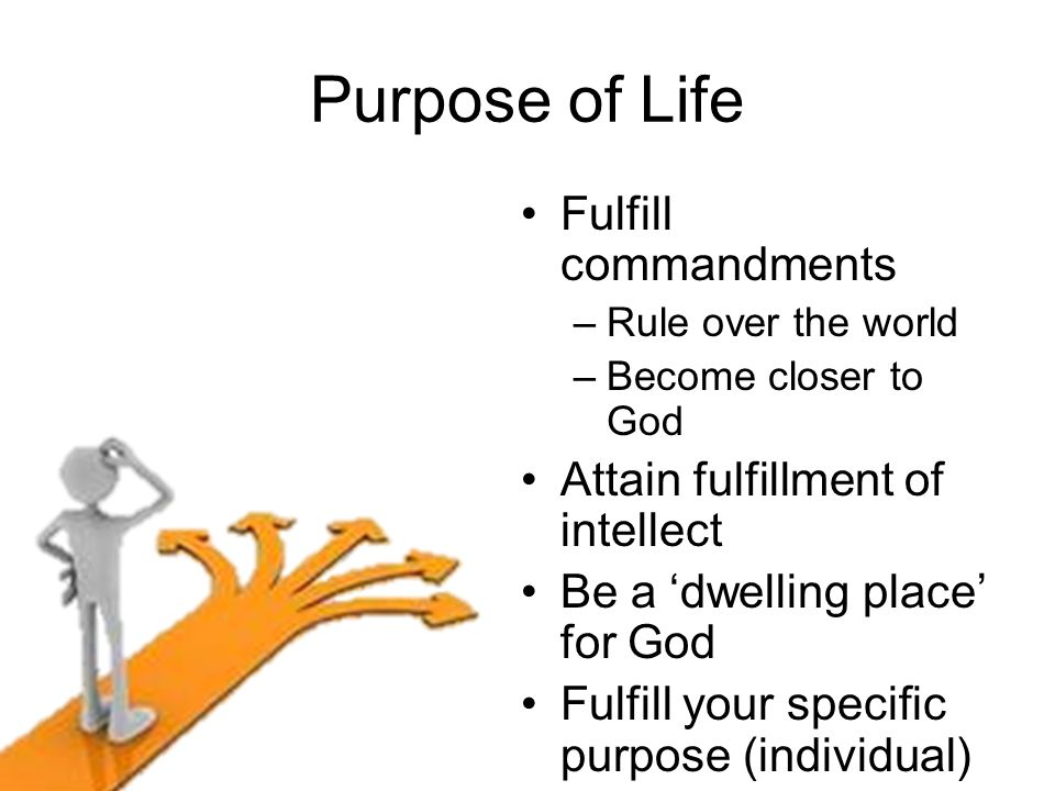 Purpose of Life Fulfill commandments –Rule over the world –Become closer to God Attain fulfillment of intellect Be a 'dwelling place' for God Fulfill your specific purpose (individual)