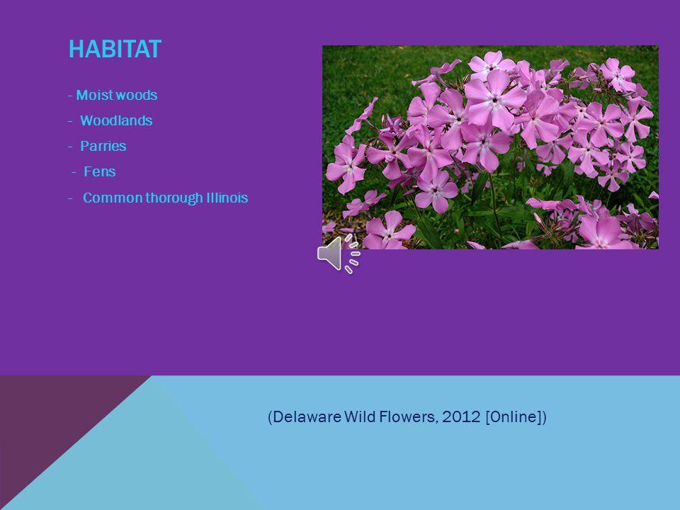 HABITAT - Moist woods - Woodlands - Parries - Fens - Common thorough Illinois (Delaware Wild Flowers, 2012 [Online])