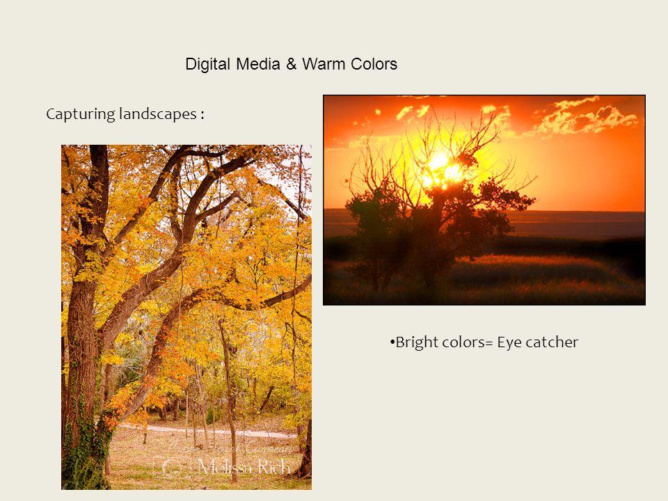 Digital Media & Warm Colors Capturing landscapes : Bright colors= Eye catcher