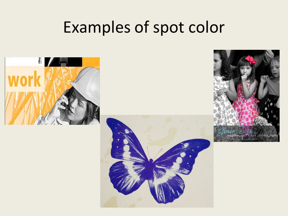 Examples of spot color