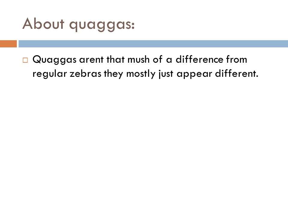 About quaggas:  Quaggas arent that mush of a difference from regular zebras they mostly just appear different.