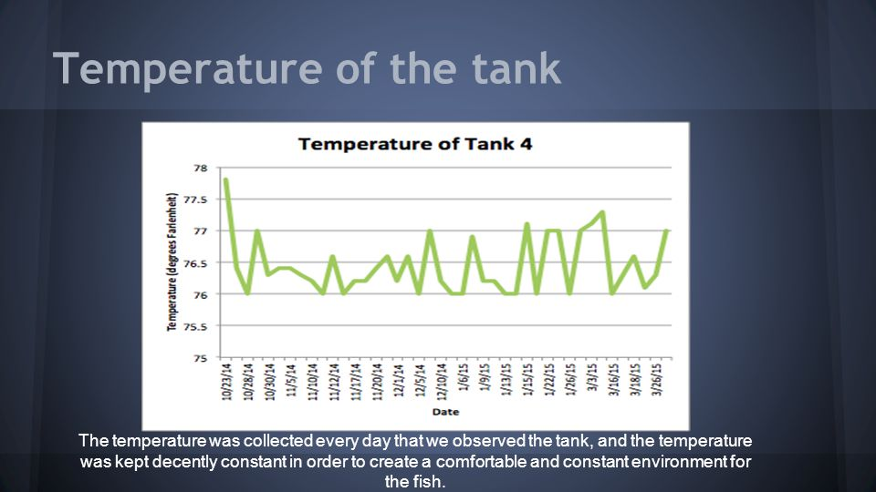 Temperature of the tank The temperature was collected every day that we observed the tank, and the temperature was kept decently constant in order to create a comfortable and constant environment for the fish.