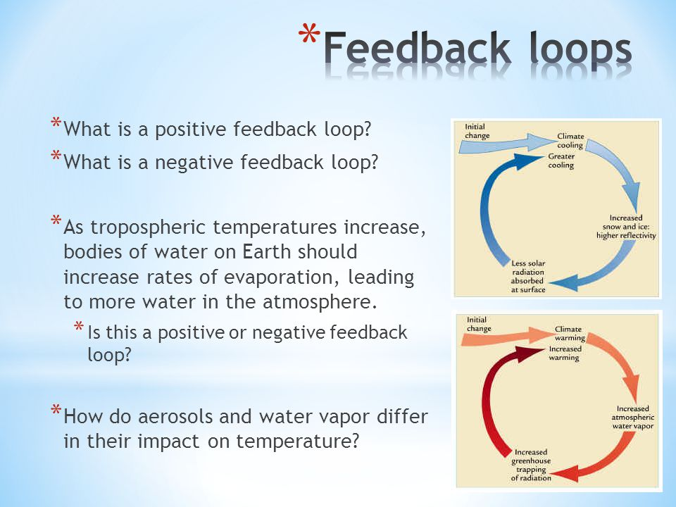 * What is a positive feedback loop. * What is a negative feedback loop.